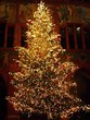 Carols at Christmas for all the family @ Holy Trinity Church, Hartshill | Hartshill | England | United Kingdom
